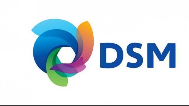 DSM700x357
