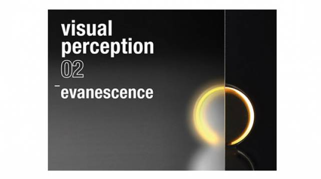 Itavisualperception02evanescencedemwebcom