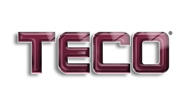 TecoGlassLogo209C
